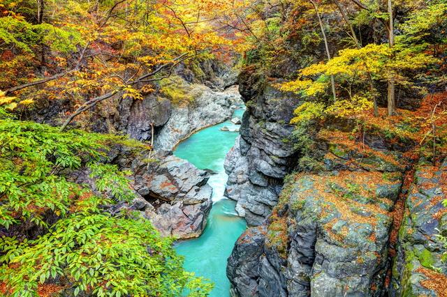 【川中温泉】川底から湧く源泉、渓流沿いの美人の湯