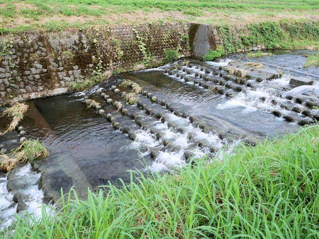 【合志温泉】県内最大級の大浴場で堪能する美肌の湯