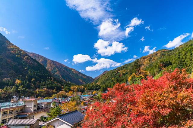 【丹波山温泉 のめこい湯】丹波山村の自然が包む「のめっこい」美肌の湯