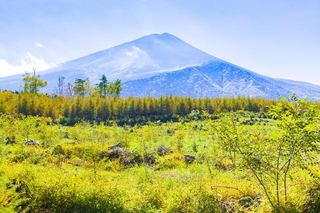 【富士青木ヶ原樹海温泉】富士山を眺める温泉地はパワースポットの中心地