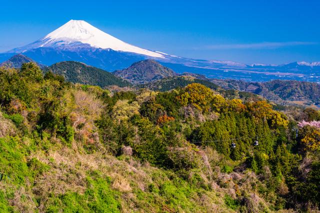 【ふじやま温泉】和風巨大浴室で入る富士山バナジウム水の温泉
