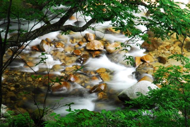 【左沢温泉】最上川の舟運で栄えた街の中に湧く一軒宿の温泉