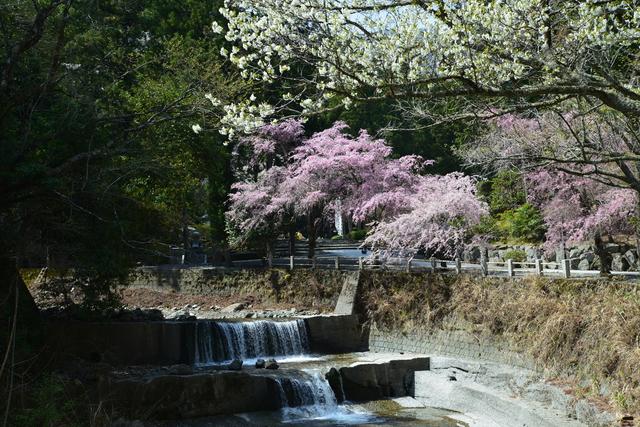 【湯沢温泉】信玄公が傷を癒やした日本の「隠し湯」
