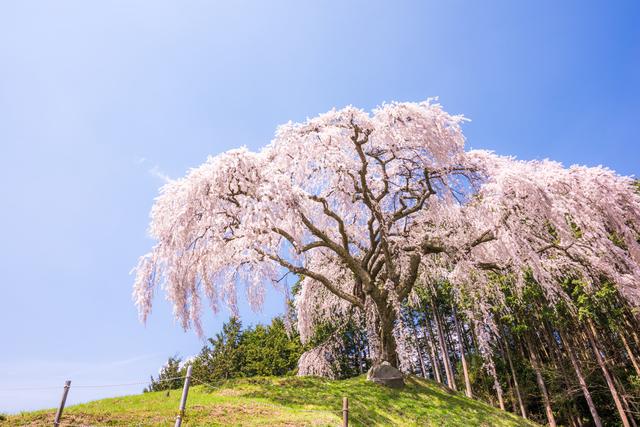 【はやぶさ温泉】「甲州の鎌倉」の高台に湧く美肌の湯