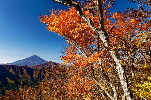 【芭蕉 月待ちの湯】松尾芭蕉も詠んだ大自然にたたずむ湯