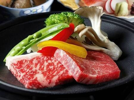 お肉メインの夕食/一例