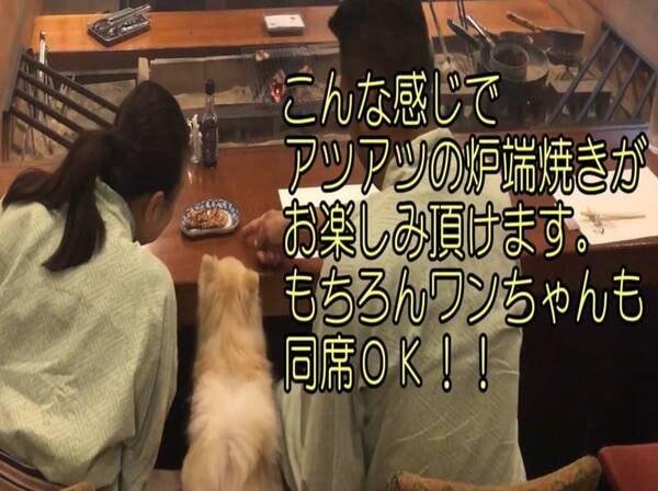 【舟盛りと金目鯛姿煮+特選炉端焼きコース/一例】
