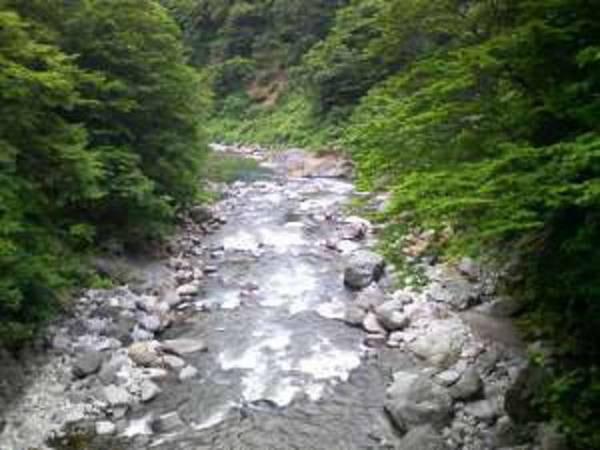 新潟の橋50選に選ばれている前倉橋から下流へ