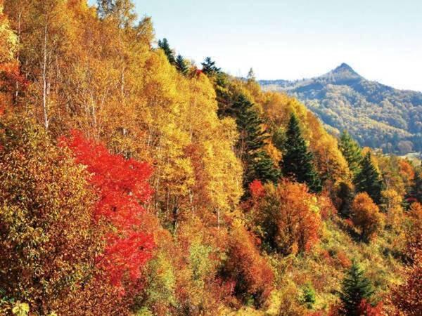 笠岳と遠めに燃え上がる紅葉