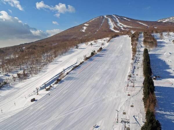 【シニア割/スタンダード2食付き】シニア限定でお得にスキーを楽しんでご宿泊!