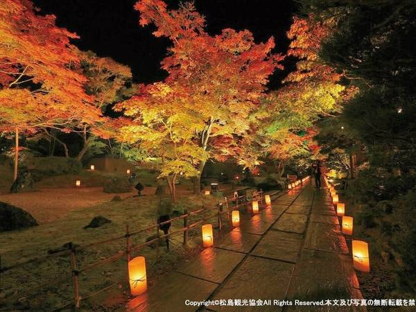 【円通院/観光情報】紅葉のライトアップ 画像提供:(一社)松島観光協会
