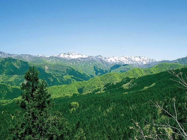 【白神山地】車で約60分。世界遺産にも登録された、最大級のブナ林