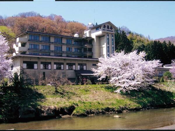 【外観・桜】毎年4月下旬頃桜が咲き乱れる