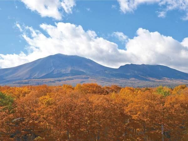 【紅葉の浅間山】屋上テラスより浅間山を望む!