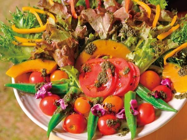 夕食サラダ/一例