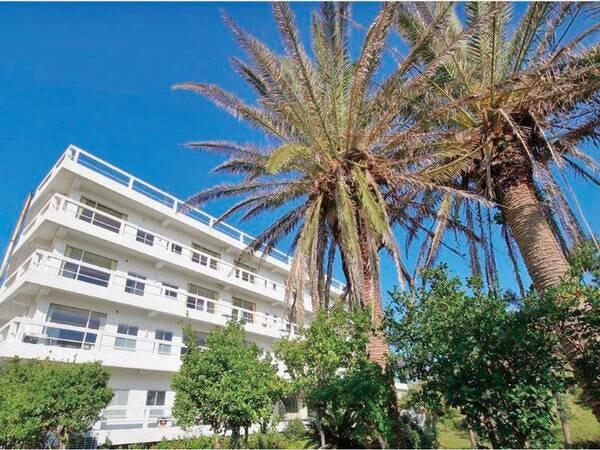 太平洋に面する、昭和レトロ感のあふれる海辺の旅館