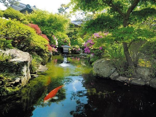 【日本庭園】離れ松風庵や観月亭からもお庭の眺望が可能