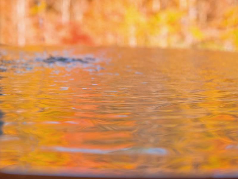 【展望露天風呂-秋-】全国でも稀な自家源泉かけ流し100%!ツルツルになると評判のアルカリ性美肌温泉