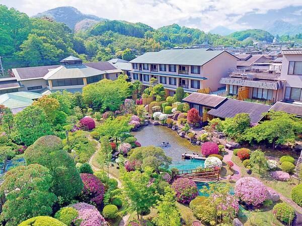 【日本庭園】季節によって、赤や白、ピンク色の花々が咲き誇る