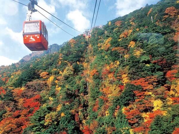 【周辺観光】湯の山観光の目玉「御在所ロープウエイ」。秋は紅葉の絶景を満喫!