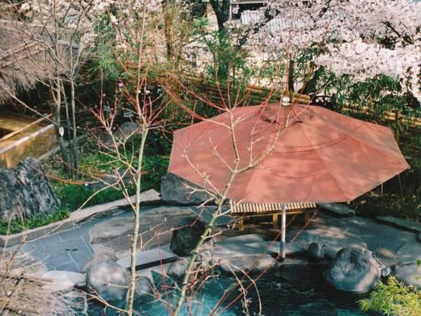 【かぐや姫の湯(女湯)】竹の産地である脇田にちなみ、17種類の竹が囲む露天温泉。浮世絵を眺めながら、優雅に湯浴み。春には桜が咲く期間も。