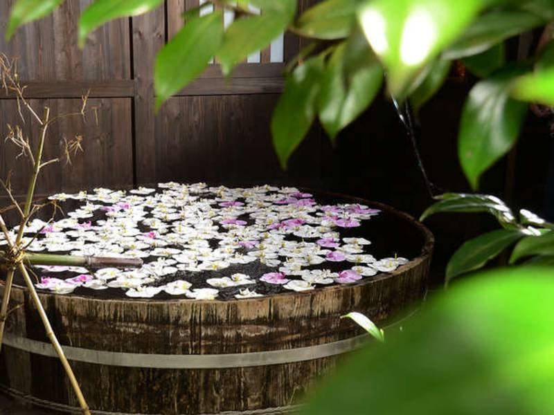 バラ湯よりも珍しい胡蝶蘭の浮かんだ貸切湯は月に2日間だけのサービスになります。