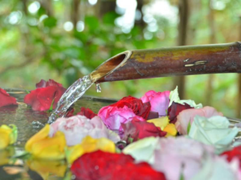 第1・第2・第3の木曜日~金曜日には女性に人気のバラ湯