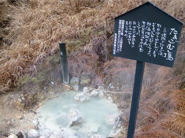 ふつふつと温泉が湧く「小松地獄」では温泉卵も作ることができる!※宿から徒歩3分ほど