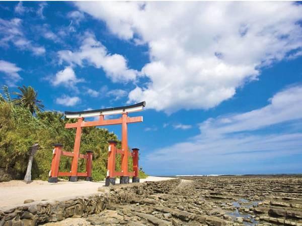 青島名物「青島神社」と「鬼の洗濯岩」まで徒歩約10分