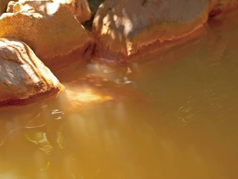 露天風呂/源泉掛け流しの美肌の湯