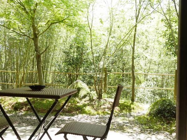 【Aタイプ/庭】四季の移ろいを感じることができる庭が併設