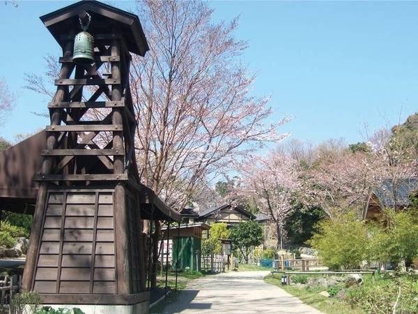 【敷地内/春】時期のよっては咲き誇る桜も愉しめる
