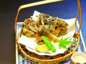 舞茸の天ぷら/例