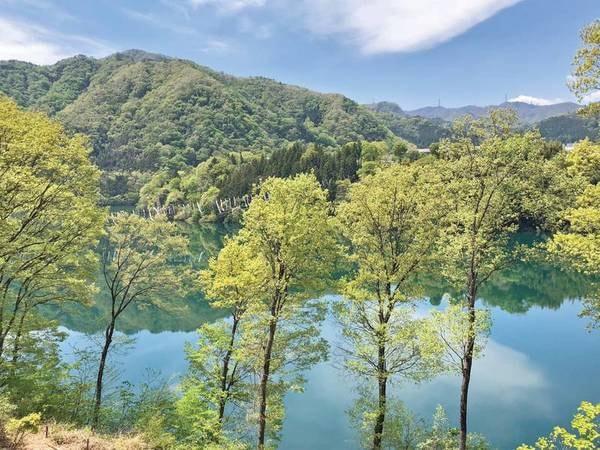 新緑の赤谷湖は絶景