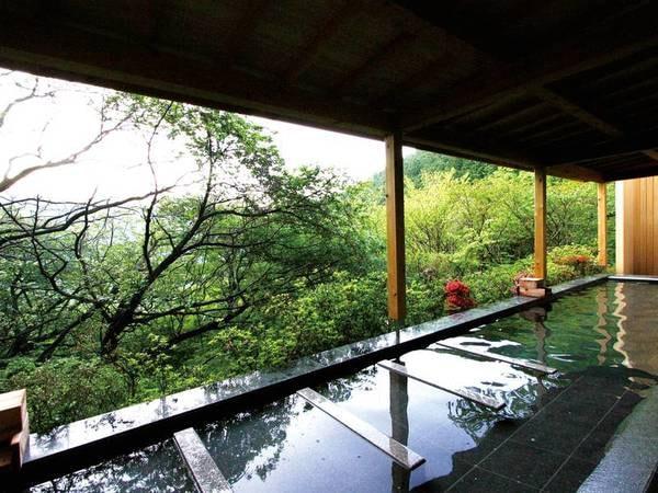 【熱海 森の温泉ホテル】思わず深呼吸したくなる、豊かな森に抱かれて。まるで森林浴を楽しむような心地よさを堪能できるホテル
