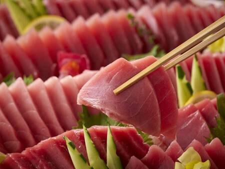 【6/1~7/21】夏の料理フェア 本まぐろ刺身 (写真は一例)