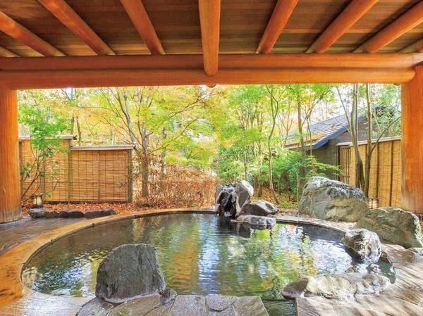 【露天風呂】野趣満点の浴場庭園