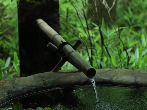 【客室風呂】岩風呂は力強くごつごつとした印象ですが、触り心地は柔らかく、優しく静かに旅の疲れを癒してくれます
