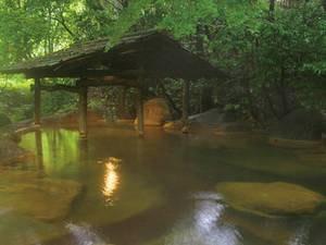 【女性専用露天風呂/四季の湯】小川のせせらぎを聞きながらゆったりと自然を満喫