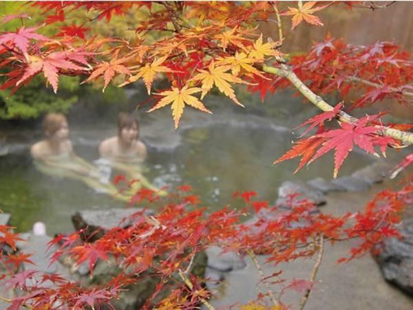 【野沢温泉ホテル】天候や気温により湯色が変化する露天風呂。全湯殿が正真正銘のかけ流し。