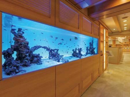 【ビュッフェ会場】幅3mの巨大水槽で楽しそうに泳ぐ、カリブ海からきた250匹以上のお魚たちがお出迎え