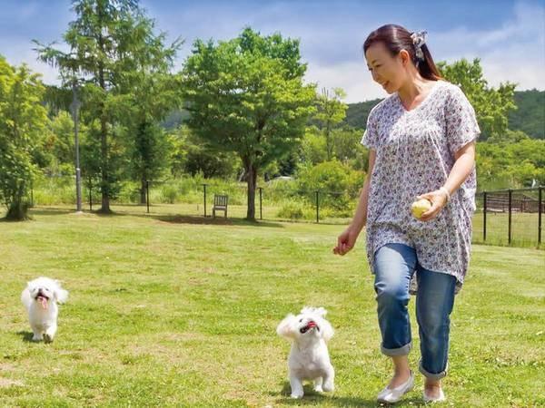 【施設】ペット歓迎宿!わんちゃんと一緒にお散歩も