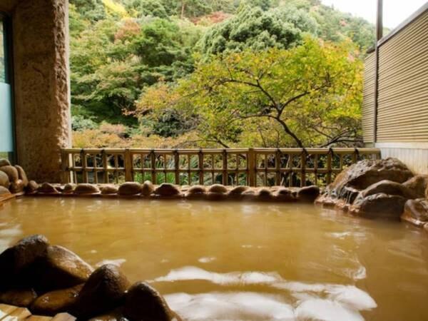【月光園 鴻朧館】【有馬温泉随一の自然環境と源泉掛け流しの温泉】