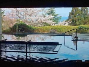 一の湯/内湯。【一の湯・内湯】春には桜を眺めながら、ゆったりと寛ぐ