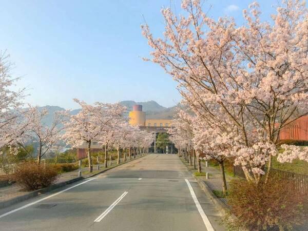 【ホテル入口】例年4月上旬には桜が楽しめる