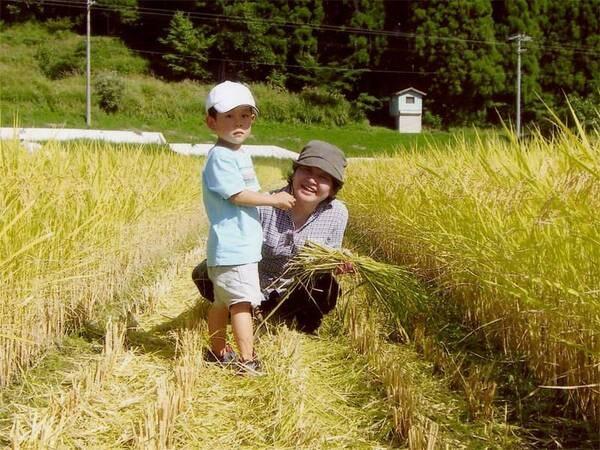 お米は自家栽培の【村岡産こしひかり】を使用♪ほんのり甘くてつやつや美味しい!