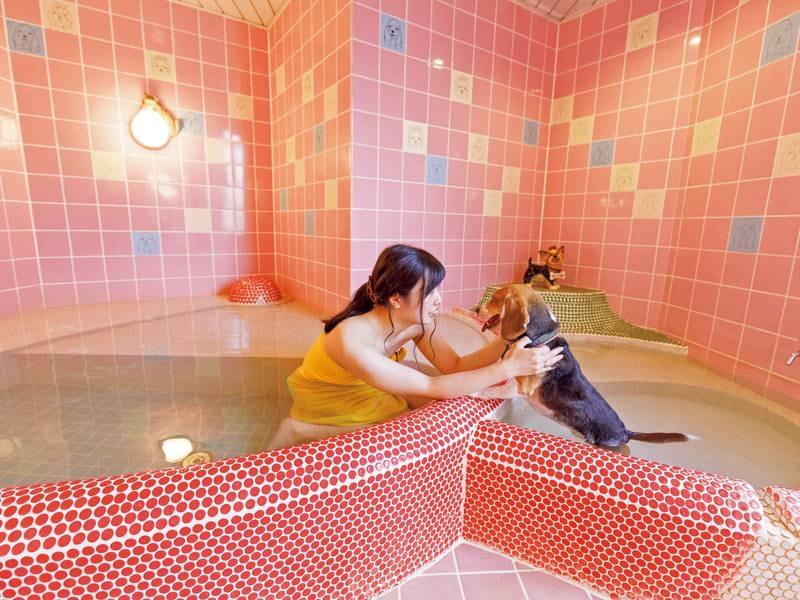 ペットと一緒に入れる家族風呂「DOG」※有料