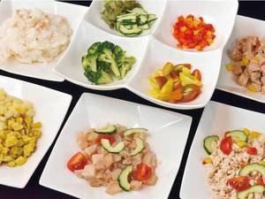 【愛犬プレート】夕朝食2食分を料理長手作り!/例