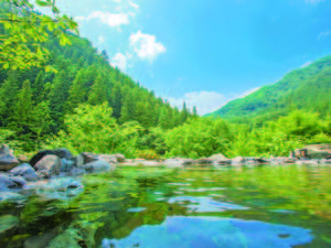 【露天風呂】一滴の水も足していない源泉100%かけ流しの温泉を堪能