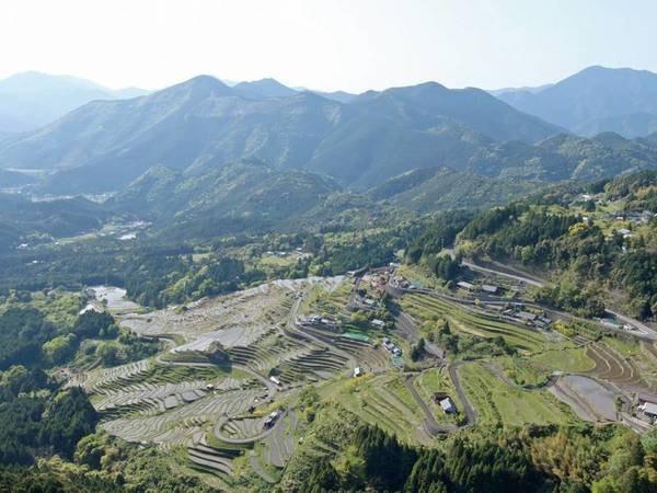 【丸山千枚田(春)】日本一の棚田景観とも言われる絶景
